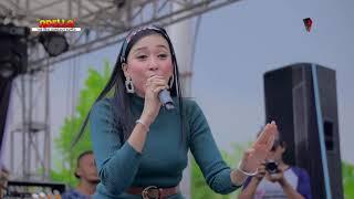 Download Geolane Elsa Safira _ Mencari Alasan - OM ADELLA live lebaksiu