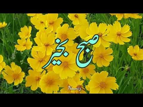 SUBHA BAKHAIR URDU VIDEO CLIP/SUBHA BAKHAIR WHATSAPP VIDEO STATUS/POWER LINES 17 August 2018