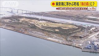 江東区「海の森」・・・帰属争った埋立地の町名案決まる(20/02/04)