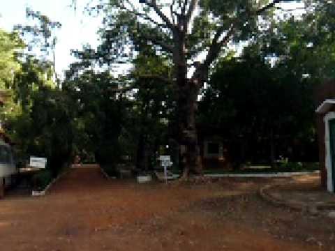 Malireis 2008: huisje op Teriya Bugu