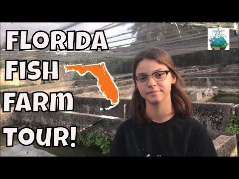 Florida Fish Farm Tour!!