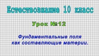 Естествознание 10 класс (Урок№12 - Фундаментальные поля как составляющие материи.)