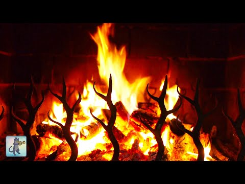 12 HOURS Of Relaxing Fireplace Sounds 🔥 Cozy Crackling Fireplace For Sleep & Study 🔥 (NO MUSIC)