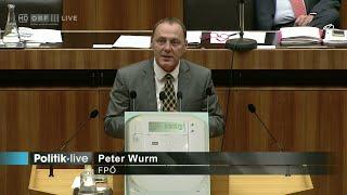 Peter Wurm - Belastung durch Smart-Meter (Stromzähler) - 14.10.2015
