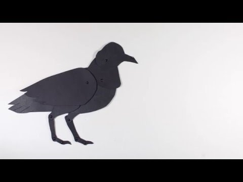 """""""Tease""""- paper cut out animation (Camosun College Film and Animation)"""