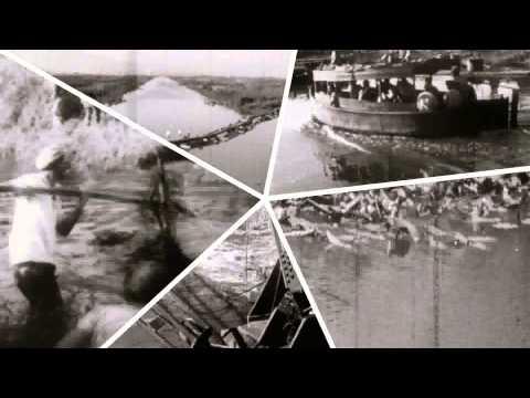110 Years of KKL-JNF Hebrew