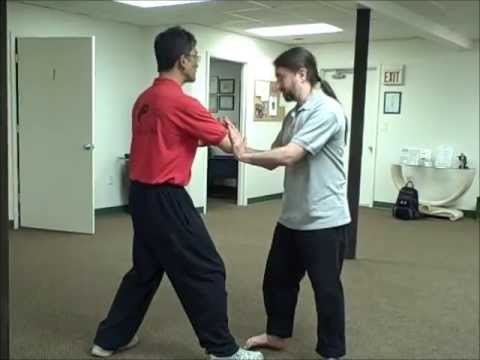 Internal Exchange w/ Sifu Brian C. Allen and Sifu Lan Tran - YouTube