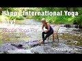 Chair Yoga   Happy Yoga with Sarah Starr Cascading River