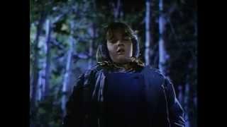 Рэй Брэдбери - Кричащая женщина 05 Полная версия,фантастика