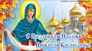 ZOOBE зайка Поздравление С Праздником Покрова Пресвятой Богородицы !