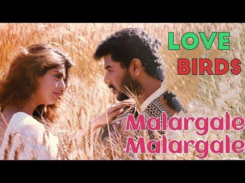 Malargale Malargale | Love Birds | Tamil WhatsApp Status | A.R. Rahman | Prabhu Deva | Nagma