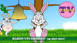Haren uti gresset - og mye mer! | Barnesanger på norsk