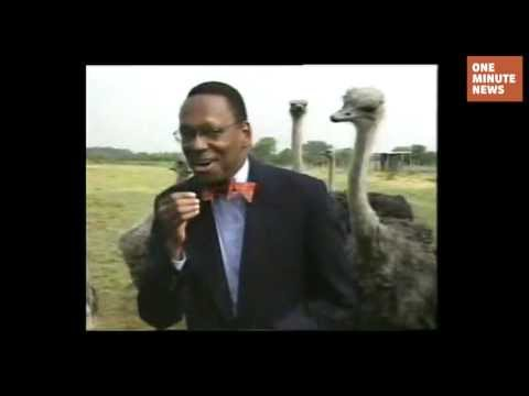 You Make Ostriches Horny