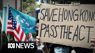 Hong Kong protesters ask President Trump to 'liberate' Chinese territory as clashes erupt | ABC News