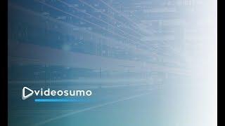 VideoSumo-demo1