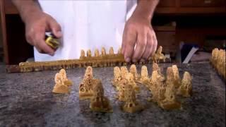 Abelhas Rainha criadas em laboratório faz Colmeias produzir mais mel