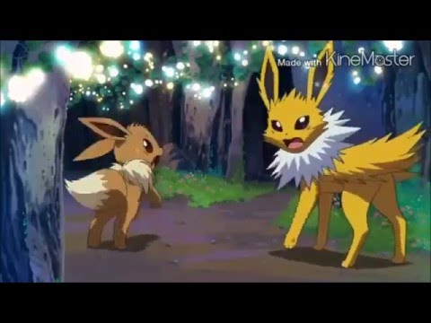 Umbreon And Jolteon Amv Never Back Down Youtube