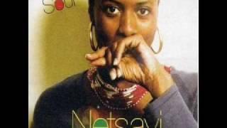 Netsayi - Tatters