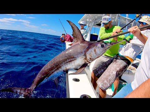 Swordfishing In CHOPPY Seas Aboard 37 Freeman Cat