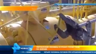 Перуанский ленивец устроил утечку газа на заводе