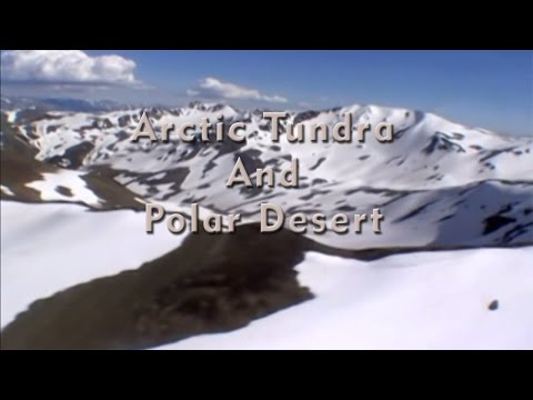 Arctic Tundra And Polar Desert Episode 01