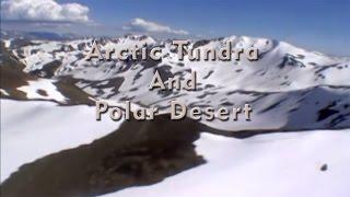 Arctic Tundra And Polar Desert Episode 01