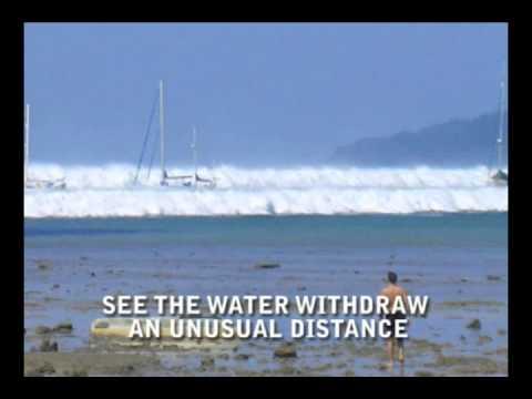 Know the Natural Warning Signs of a Tsunami