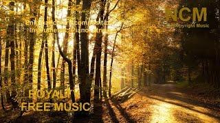"Royalty Free Music "" Ofelia"