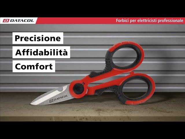 Forbice Elettricisti Professionale (K170212)