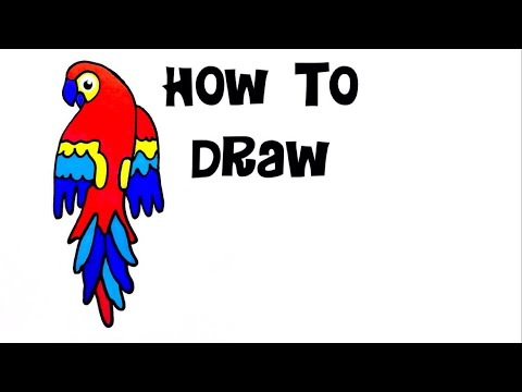 How to draw Parrot drawing painting diy crafts coloring pages kids rainbow cats art sharpie markers