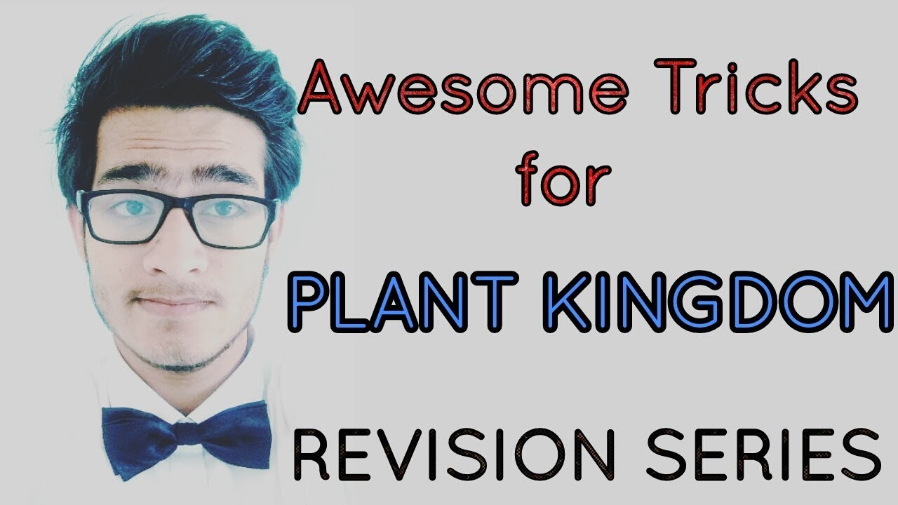 Awesome Tricks to learn plant kingdom for NEET AIIMS JIPMER