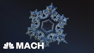 Anatomy Of A Snowflake: 35 Distinct Categories | Mach | NBC News