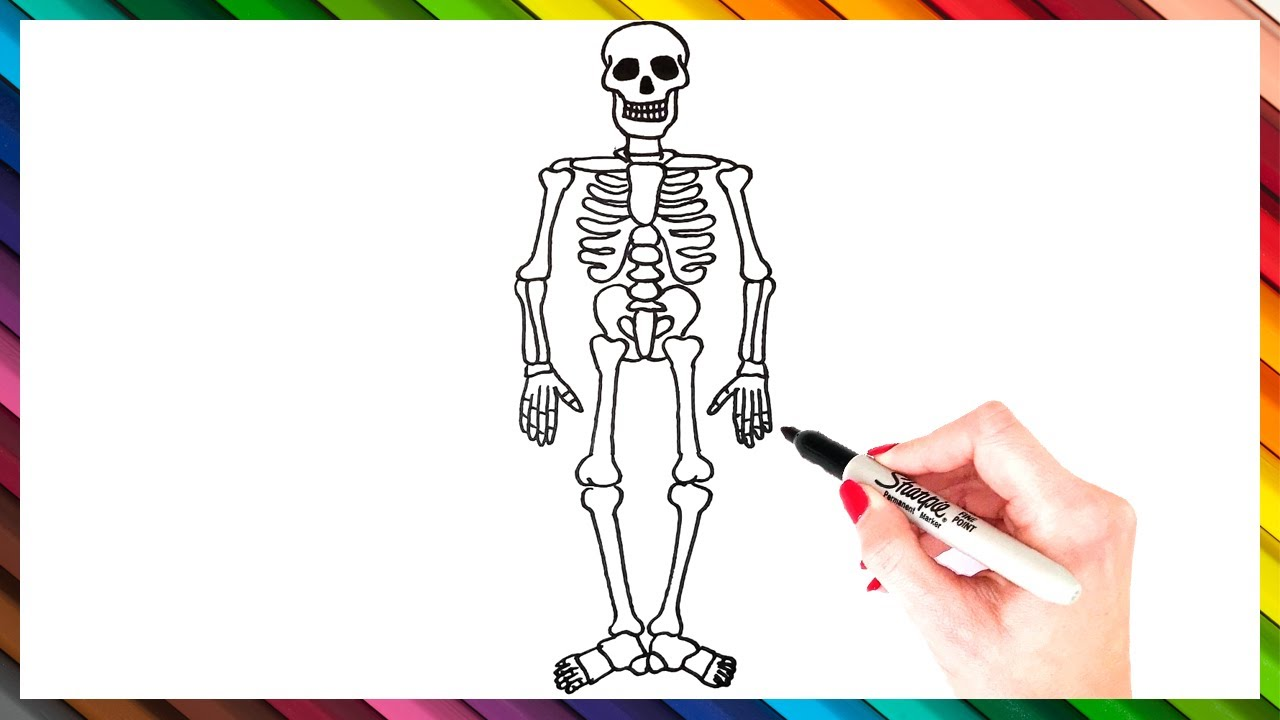 How To Draw A Skeleton Step By Step Skeleton Drawing Easy Super Easy Drawing Tutorials Youtube