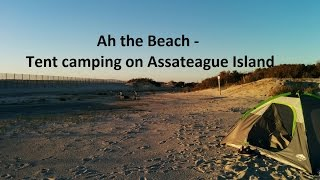 Ah the Beach, Tęnt Camping on Assateague Island