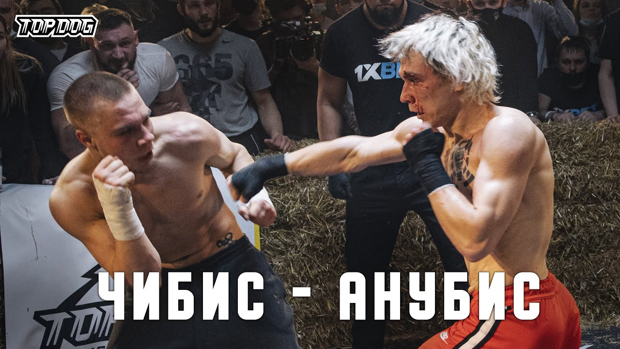 Чибис vs. Анубис | TDFC 7 | бой на голых кулаках