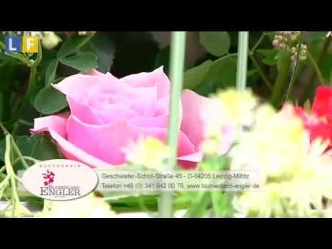Beispiel: Rosenrausch 2013, Video: Blumenland Engler.