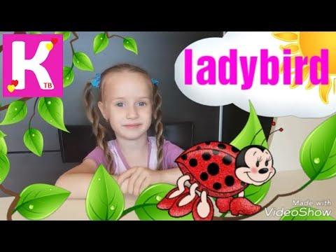 Английский язык для детей / Насекомые на английском и на русском / Катя ТВ / Insects for children