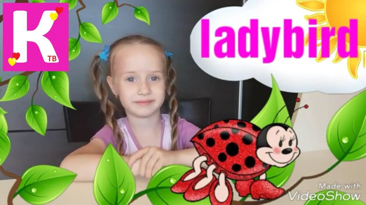 Насекомые на английском и на русском для детей - YouTube