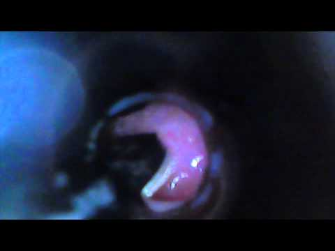 Sax Tonguing by where? how? inside of the mouth