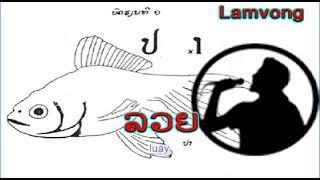 ລວຍ  -  ... ? ... (ພັລະນາກອນບັນເທີງ) (VO) ເພັງລາວ ເພງລາວ เพลงลาว lao song