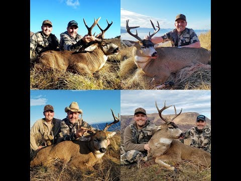 2017 Kodiak Alaska Sitka Blacktail Hunt