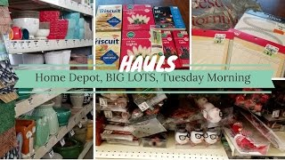 Mini Hauls | Home Depot, BIG Lots, Tuesday Morning | Deelovelylife