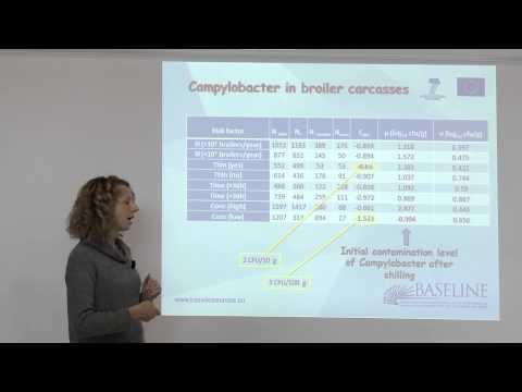 Baseline proposal on safety criteria (PO)