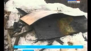 В Саранске собака спасла дом от пожара