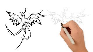 How To Draw a Phoenix Bird Step by Step