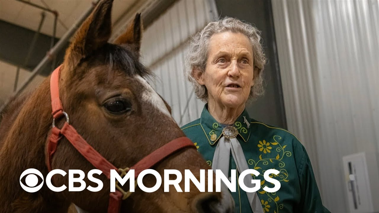 Download Temple Grandin urges parents and educators to expose autistic children to a range of experiences