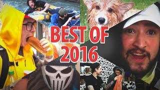 2016 • Best of Cow Chop