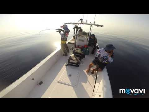 OFFSHORE JIGGING UAE/THE BATTLE WITH LT
