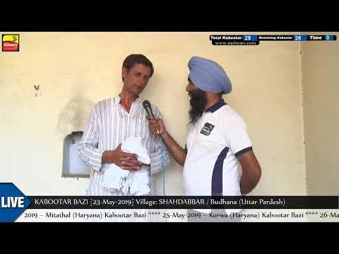 INTERVIEW || MASTER UP IKRAM PARDHAN 🔴 SHAHDABBAR (Uttar Pradesh) KABOOTAR BAZI [23-May-2019]