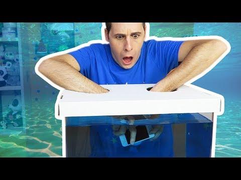 COSA C' NELLA SCATOLA SOTT'ACQUA - What's in the box challenge underwater